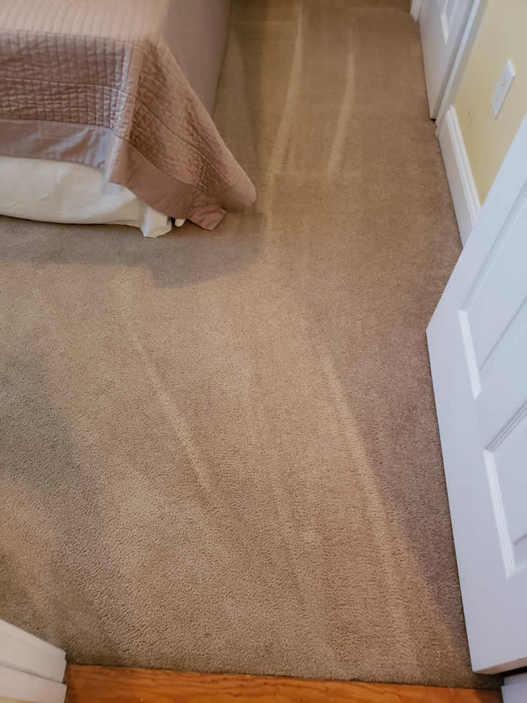 Myrtle Beach Carpet Cleaning Services Read Our Carpet